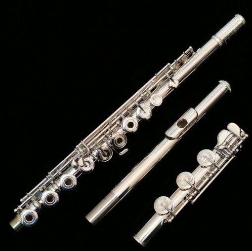 Les Privat Flute Ke Rumah Di Karawaci Guru Les Privat Flute Ke Rumah di Karawaci