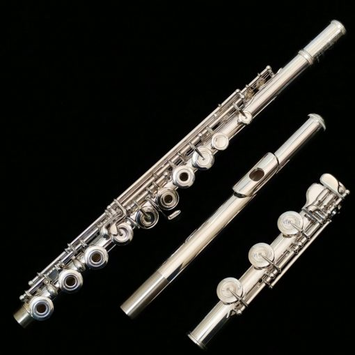 Les Privat Flute Ke Rumah Di Cilebut Guru Les Privat Flute Ke Rumah di Cilebut